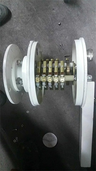 出口集电环